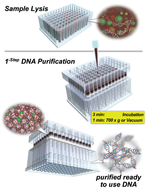 nexttec-dna-isolation